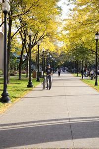 Profile for DePaul University - HigherEdJobs