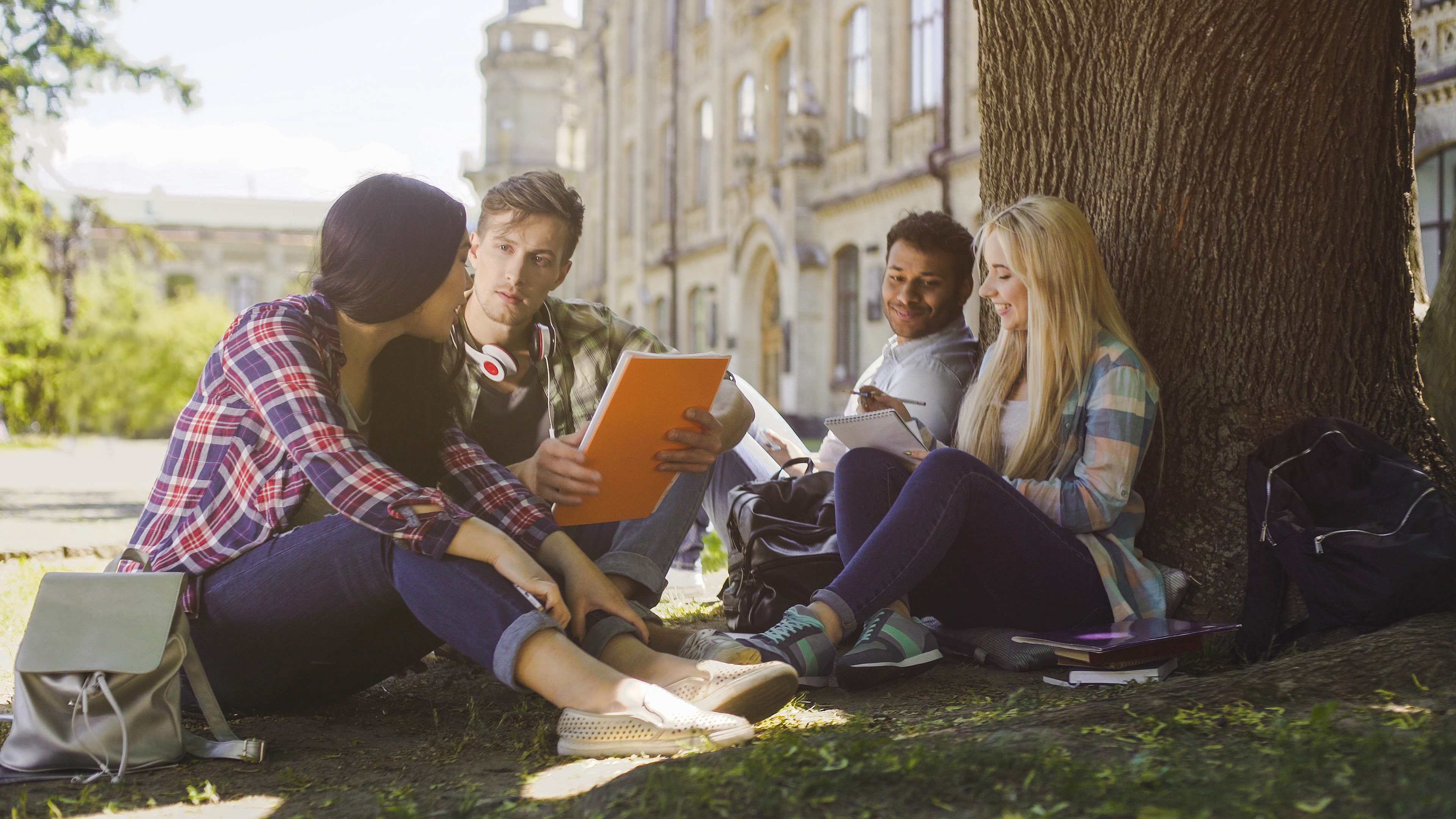 College students having discussion under tree on campus.
