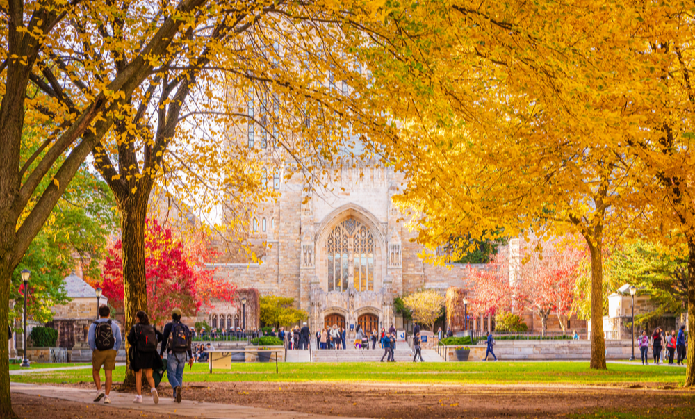 Beautiful fall colors outside a university library